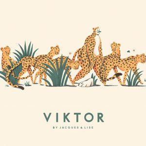 Childrens book Viktor