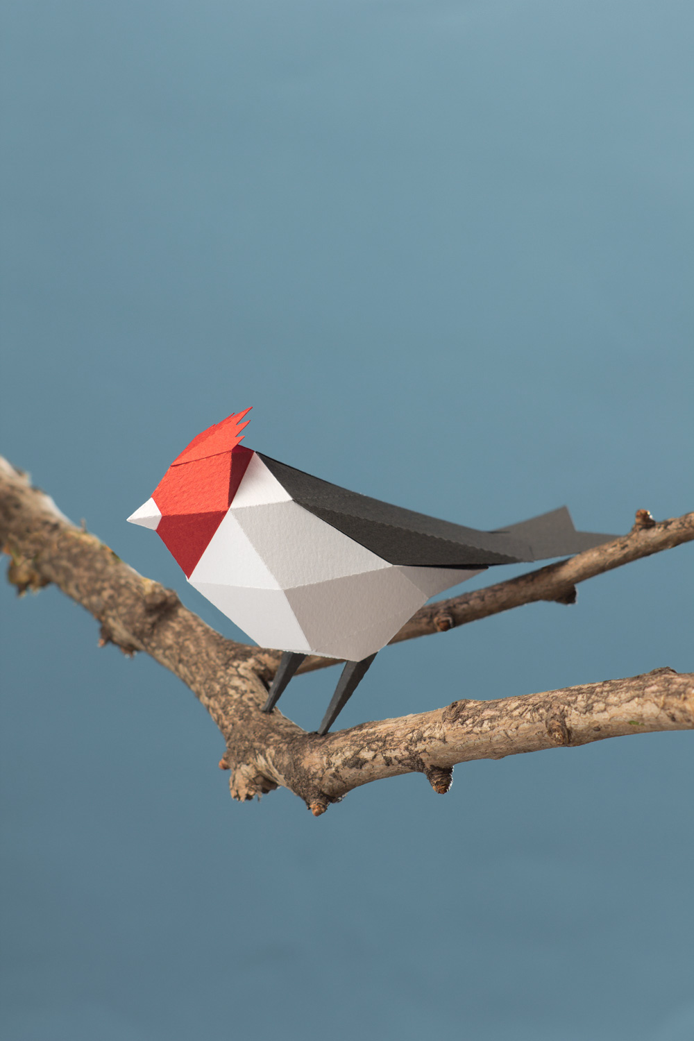 Paper Birds by Guardabosques