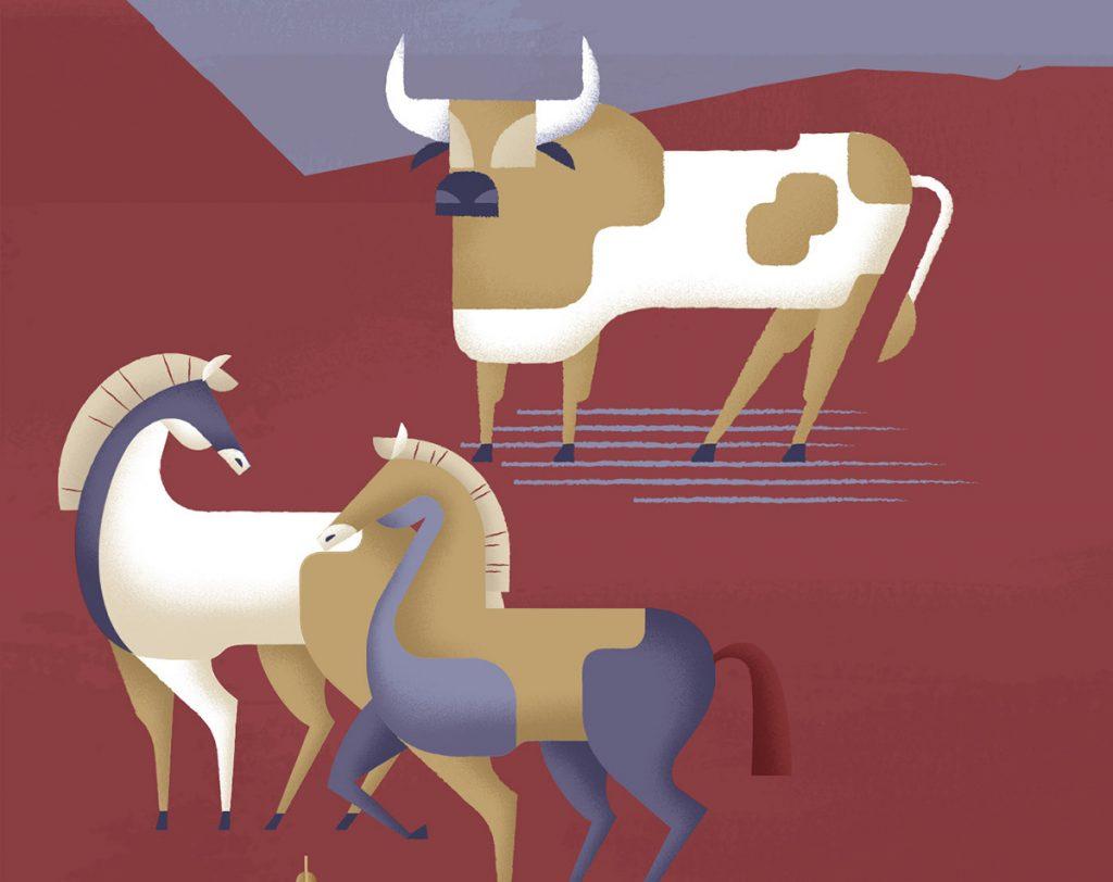 Adamastor Studio Illustration