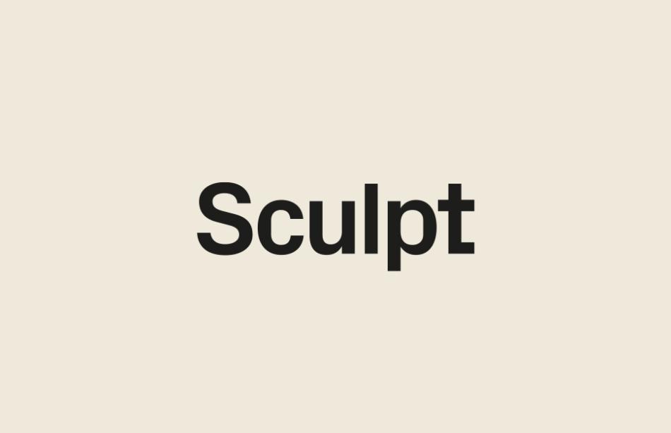 Sculpt by Common Curiosity